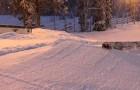 Lumilautailun Superviikonloppu Iso-Syötteellä 30. – 31.1.2016
